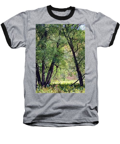 Willow Cathedral Baseball T-Shirt