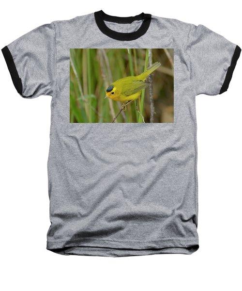 Baseball T-Shirt featuring the photograph Wilson's Warbler by Doug Herr