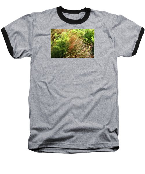 Windblown Grasses Baseball T-Shirt by Nareeta Martin
