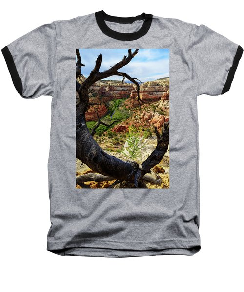 Baseball T-Shirt featuring the photograph Window by Chad Dutson