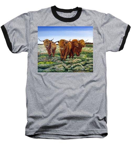 Windswept Highland Cattle  Baseball T-Shirt