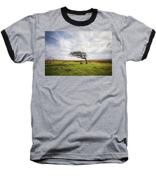 Windswept Tree Baseball T-Shirt