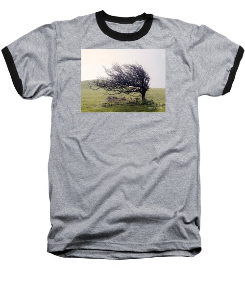 Windswept Tree Baseball T-Shirt