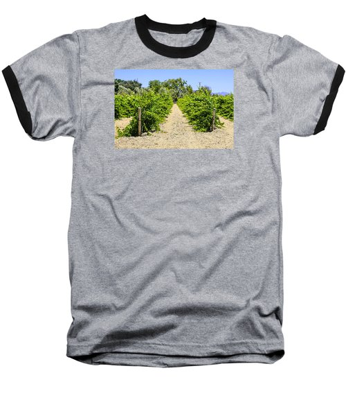 Wine On The Vine Baseball T-Shirt by Chris Smith