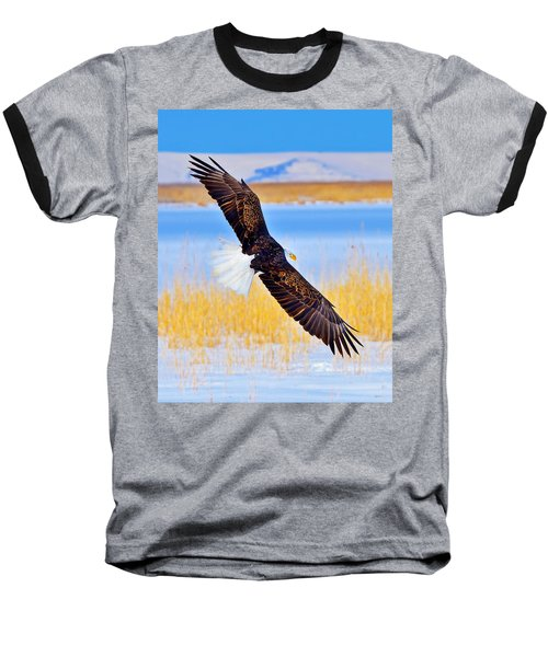 Wingspan Baseball T-Shirt by Greg Norrell