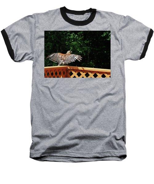Wingspan Of Hawk Baseball T-Shirt