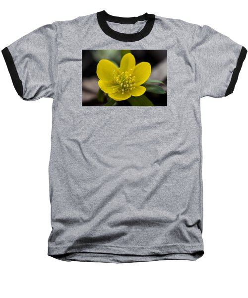 Winter Aconite Baseball T-Shirt