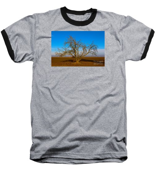 Winter Apple Tree Baseball T-Shirt
