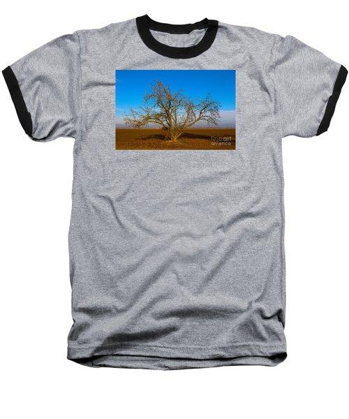 Winter Apple Tree Baseball T-Shirt
