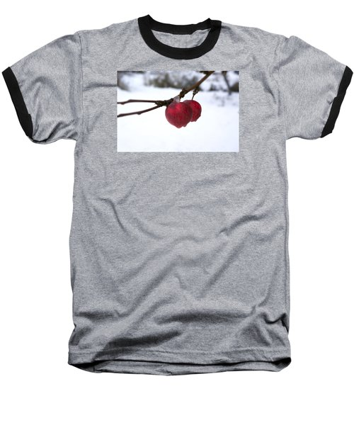 Winter Apples Baseball T-Shirt by Ellery Russell
