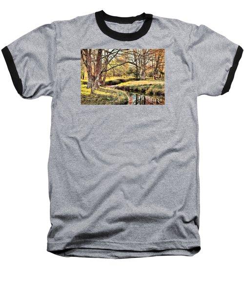 Winter Artistry Ap Baseball T-Shirt by Dan Carmichael