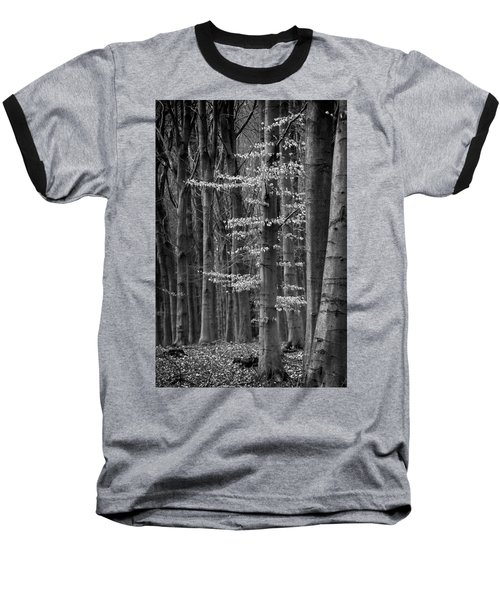 Winter Beech Baseball T-Shirt by Inge Riis McDonald