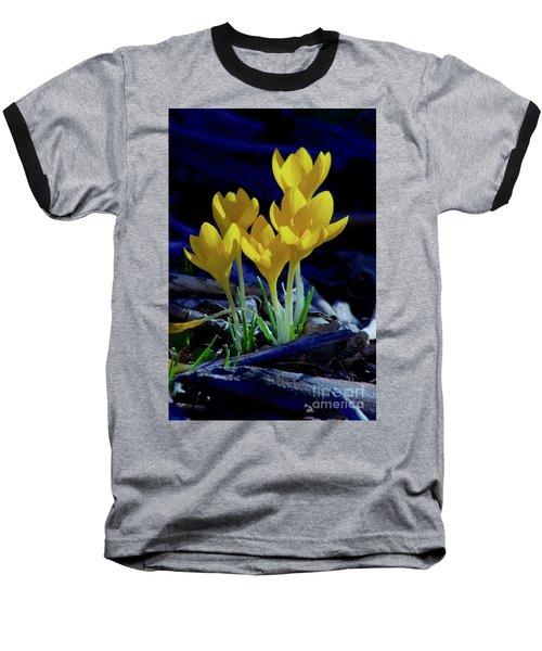 Winter Bloom Baseball T-Shirt