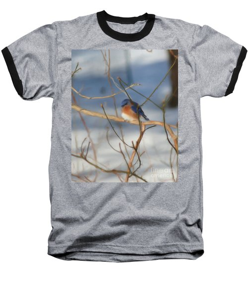Baseball T-Shirt featuring the painting Winter Bluebird Art by Smilin Eyes  Treasures