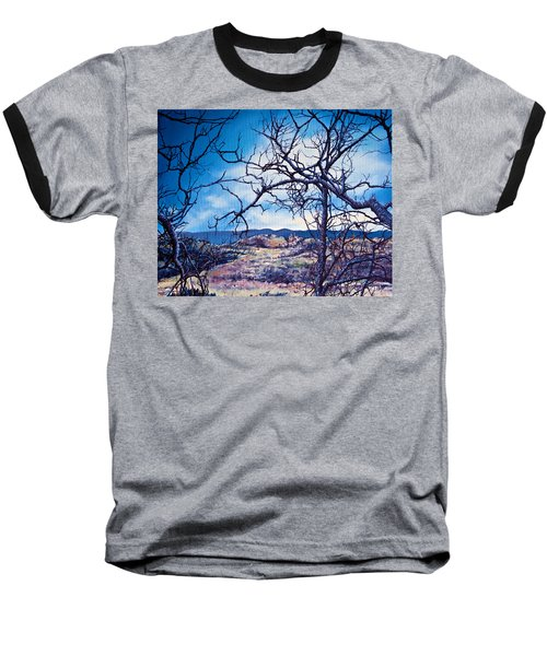 Winter Branches Baseball T-Shirt