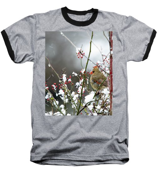 Baseball T-Shirt featuring the photograph Winter Cardinal by Gary Wightman