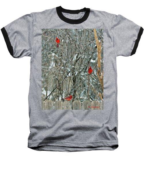 Winter Cardinals Baseball T-Shirt
