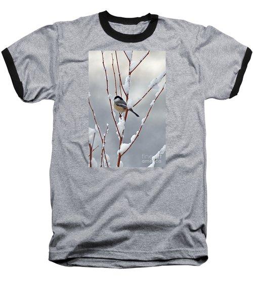 Winter Chickadee Baseball T-Shirt by Diane E Berry