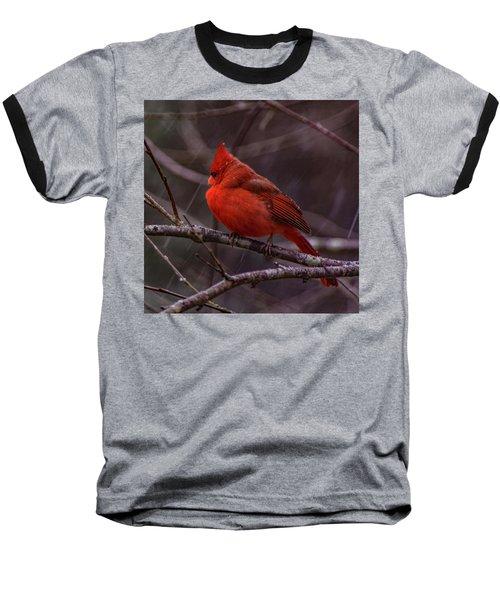 Winter Crimson  Baseball T-Shirt