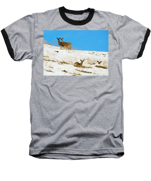 Baseball T-Shirt featuring the photograph Winter Deer by Mike Dawson