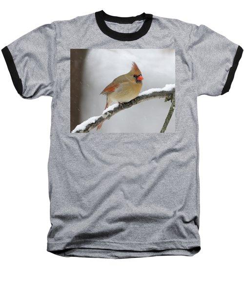 Winter Female Cardinal Baseball T-Shirt