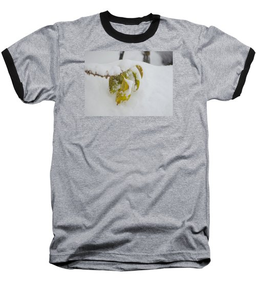 Baseball T-Shirt featuring the photograph Winter Leaves by Deborah Smolinske