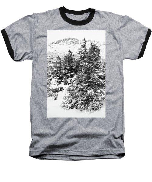 Winter Night Forest M Baseball T-Shirt