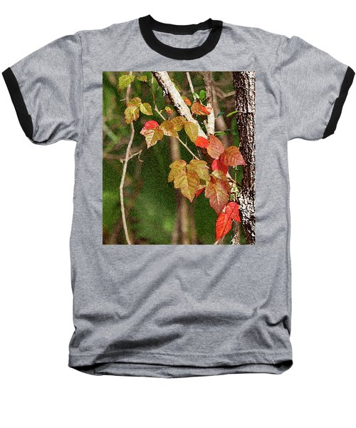 Winter On Gillot Blvd. Pt. Charlotte,fl Baseball T-Shirt