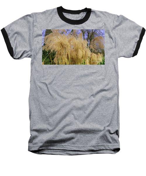 Winter Park Bulrush Baseball T-Shirt