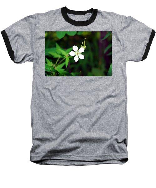 Winter Park White Baseball T-Shirt