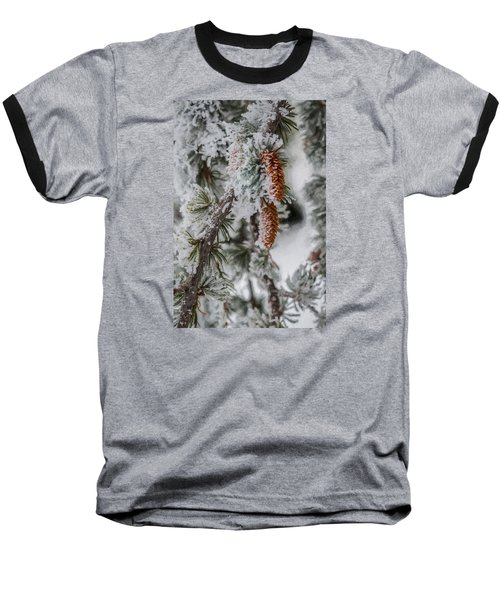 Winter Pine Cones Baseball T-Shirt