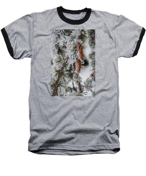 Winter Pine Cones Baseball T-Shirt