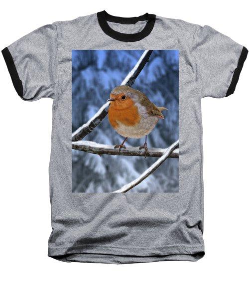 Winter Robin Baseball T-Shirt