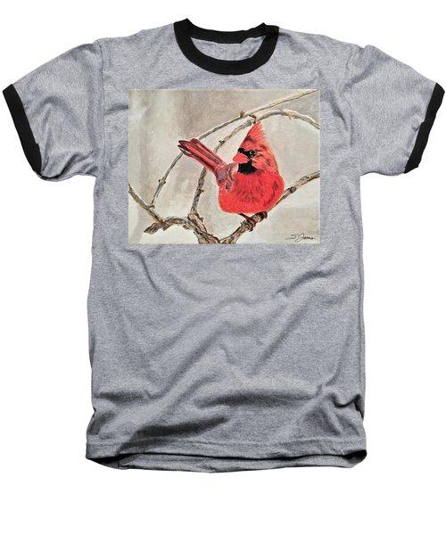 Winter Sentinal Baseball T-Shirt