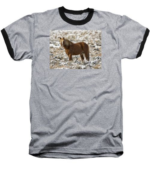 Winter Stallion Baseball T-Shirt