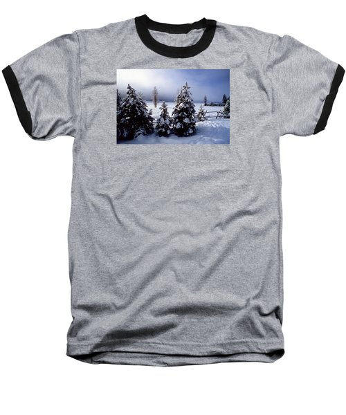 Winter Takes All Baseball T-Shirt