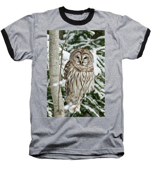 Winter Time Barred Owl Baseball T-Shirt