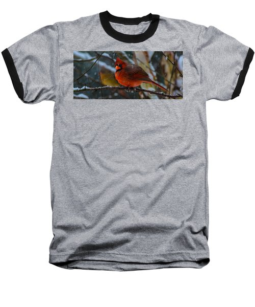Winter Twosome  Baseball T-Shirt