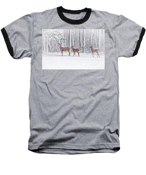 Winter Visits Baseball T-Shirt by Karol Livote