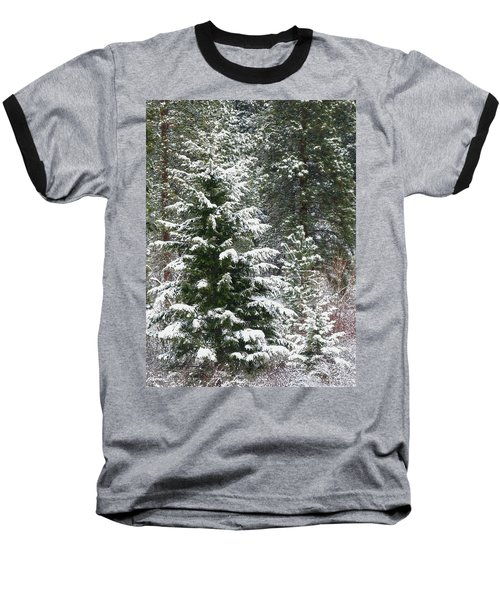 Baseball T-Shirt featuring the photograph Winter Woodland by Will Borden