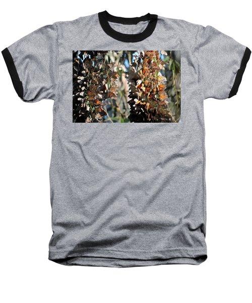 Wintering In Santa Cruz Baseball T-Shirt