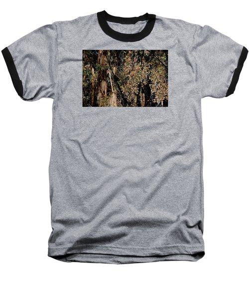 Wintering Monarchs Baseball T-Shirt