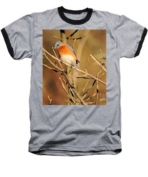 Winter's Bluebird  Baseball T-Shirt