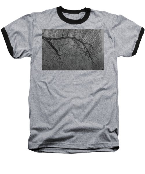 Wintery Tree Baseball T-Shirt