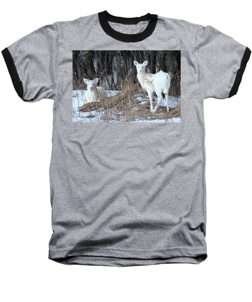 Wintery White Baseball T-Shirt by Brook Burling