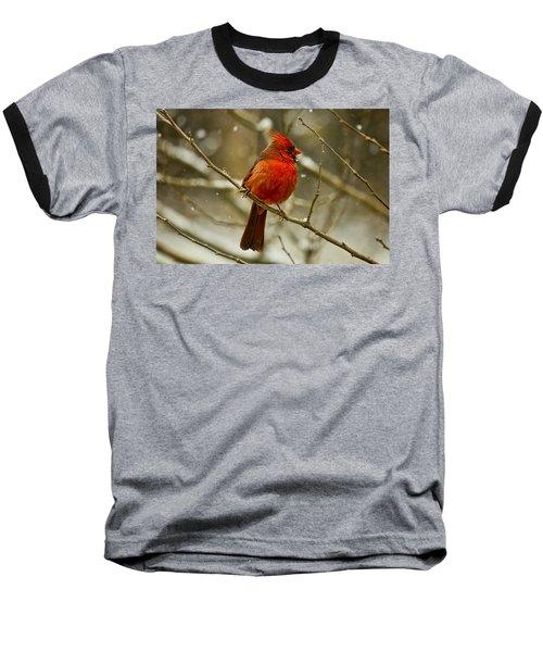 Wintry Cardinal Baseball T-Shirt