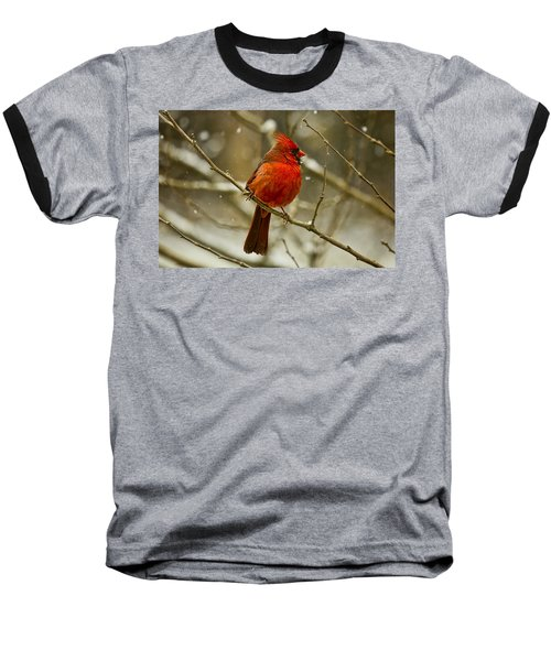 Wintry Cardinal Baseball T-Shirt