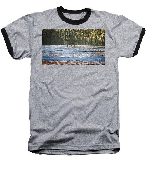 Wisconsin Whitetail Deer Baseball T-Shirt