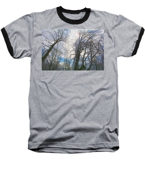 Wisdom Of The Trees Baseball T-Shirt by Angelo Marcialis