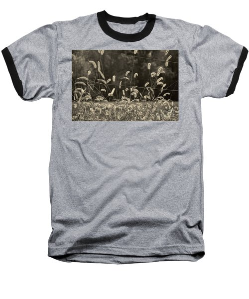 Wispy Baseball T-Shirt by Joanne Coyle